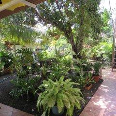 Отель Taharuu Surf Lodge Французская Полинезия, Папеэте - отзывы, цены и фото номеров - забронировать отель Taharuu Surf Lodge онлайн фото 8