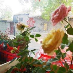 Отель Hutong Impressions Beijing Guesthouse Китай, Пекин - отзывы, цены и фото номеров - забронировать отель Hutong Impressions Beijing Guesthouse онлайн фото 15