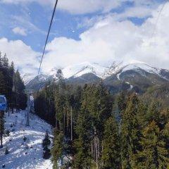 Отель Bansko Prespa Ski Penthouse Болгария, Банско - отзывы, цены и фото номеров - забронировать отель Bansko Prespa Ski Penthouse онлайн фото 5