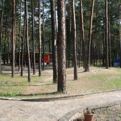 Гостиница Буймеровка Сосновый & SPA – курорт спортивное сооружение