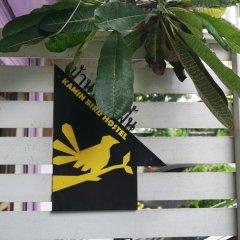 Kamin Bird Hostel фото 2