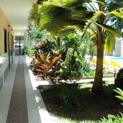 Отель Aparta Hotel Bruno Доминикана, Бока Чика - отзывы, цены и фото номеров - забронировать отель Aparta Hotel Bruno онлайн фото 8