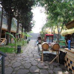 Янаис Отель фото 15