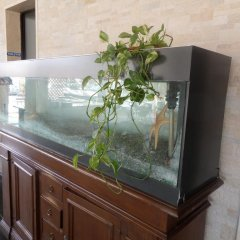 Hotel Il Porto Казаль-Велино удобства в номере