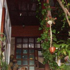 Apartments Pod Lozom in Petrovac, Montenegro from 82$, photos, reviews - zenhotels.com photo 3