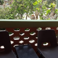 Отель Almond Tree Guest House питание фото 3