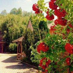 Отель Villa Valeria Венгрия, Хевиз - отзывы, цены и фото номеров - забронировать отель Villa Valeria онлайн фото 8