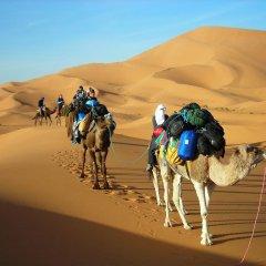 Отель Morocco Desert Trek Марокко, Мерзуга - отзывы, цены и фото номеров - забронировать отель Morocco Desert Trek онлайн спортивное сооружение