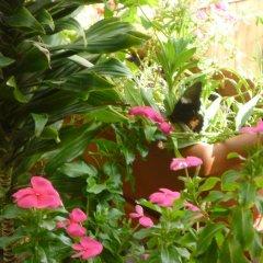 Отель La Escalinata Гондурас, Копан-Руинас - отзывы, цены и фото номеров - забронировать отель La Escalinata онлайн фото 11