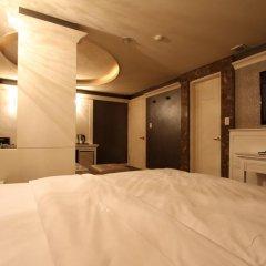 Art Hotel 3* Номер Делюкс с различными типами кроватей фото 4