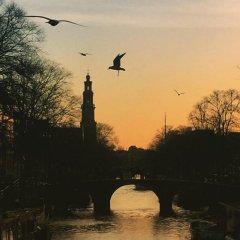Отель Houseboat Westerdok Нидерланды, Амстердам - отзывы, цены и фото номеров - забронировать отель Houseboat Westerdok онлайн приотельная территория фото 2