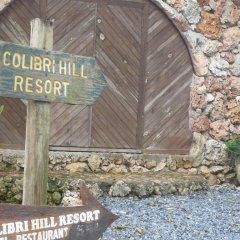 Отель Colibri Hill Resort Гондурас, Остров Утила - отзывы, цены и фото номеров - забронировать отель Colibri Hill Resort онлайн помещение для мероприятий