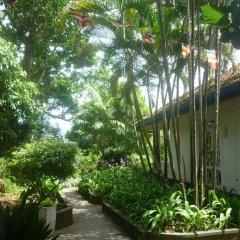 Отель Laluna Ayurveda Resort Шри-Ланка, Бентота - отзывы, цены и фото номеров - забронировать отель Laluna Ayurveda Resort онлайн фото 9