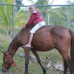 Отель Milbrooks Resort Ямайка, Монтего-Бей - отзывы, цены и фото номеров - забронировать отель Milbrooks Resort онлайн с домашними животными