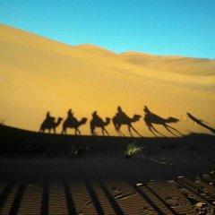 Отель Merzouga Riad and Bivouac Excursion Марокко, Мерзуга - отзывы, цены и фото номеров - забронировать отель Merzouga Riad and Bivouac Excursion онлайн пляж фото 2