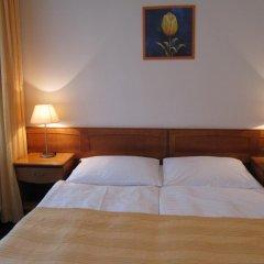 Hotel Jana / Pension Domov Mladeze Стандартный номер с двуспальной кроватью фото 5
