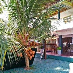 Отель Luthmin River View Hotel Шри-Ланка, Бентота - отзывы, цены и фото номеров - забронировать отель Luthmin River View Hotel онлайн бассейн