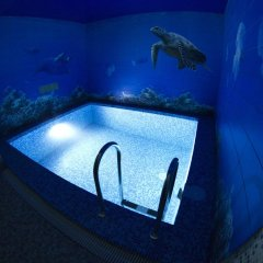 Hotel LogHouse бассейн
