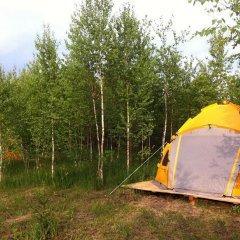 Гостиница Farm Camping Nikola Lenivets в Калуге отзывы, цены и фото номеров - забронировать гостиницу Farm Camping Nikola Lenivets онлайн Калуга приотельная территория фото 2