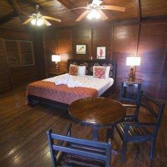 Отель Chachagua Rainforest Ecolodge 3* Стандартный номер с различными типами кроватей фото 9