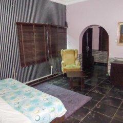 Отель Topaz Lodge 2* Стандартный номер с различными типами кроватей фото 5