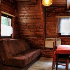 Отель Camping Pod Krokwia Польша, Закопане - отзывы, цены и фото номеров - забронировать отель Camping Pod Krokwia онлайн комната для гостей фото 4