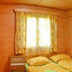 Отель Chalets Vitkova Hora Карловы Вары комната для гостей фото 3