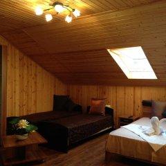 Мини-отель Папайя Парк Номер Комфорт с различными типами кроватей фото 2