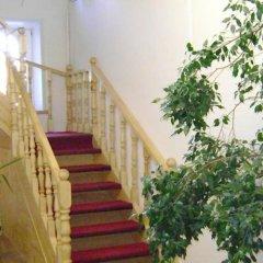 Гостиница Галчонок интерьер отеля фото 2