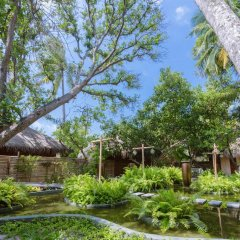 Отель Malahini Kuda Bandos Resort фото 6