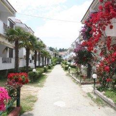 Отель Villa Reppas Греция, Пефкохори - отзывы, цены и фото номеров - забронировать отель Villa Reppas онлайн фото 2
