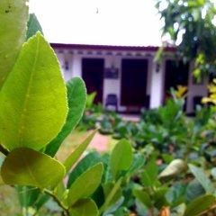 Sylvester Villa Hostel Negombo Номер категории Эконом с различными типами кроватей фото 14