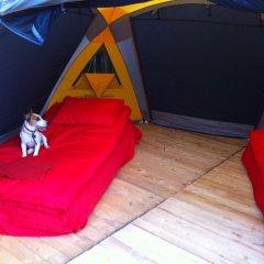 Гостиница Farm Camping Nikola Lenivets в Калуге отзывы, цены и фото номеров - забронировать гостиницу Farm Camping Nikola Lenivets онлайн Калуга детские мероприятия