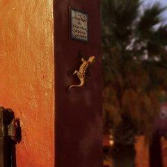 Отель Finca Silvestre Сан-Рафаэль интерьер отеля фото 2
