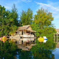 Oravae Island Cottages in Kukundu, Solomon Islands from 297$, photos, reviews - zenhotels.com beach