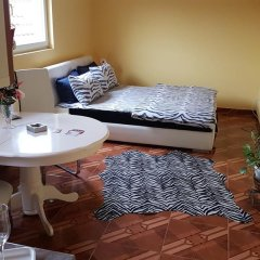 Апартаменты Apartments Maca Нови Сад комната для гостей фото 4