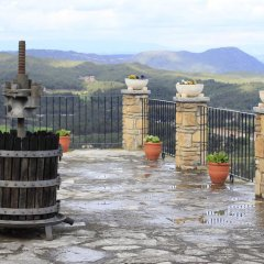 Отель Castell de Guardiola фото 2