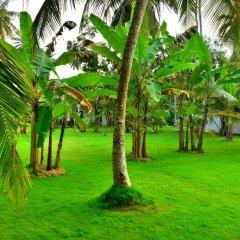 Отель Lucas Memorial Шри-Ланка, Косгода - отзывы, цены и фото номеров - забронировать отель Lucas Memorial онлайн фото 6