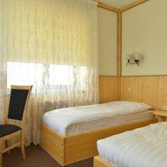 Hotel Polina 3* Стандартный номер с различными типами кроватей