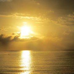 Отель A Piece of Paradise Montego Bay Ямайка, Монтего-Бей - отзывы, цены и фото номеров - забронировать отель A Piece of Paradise Montego Bay онлайн приотельная территория фото 2