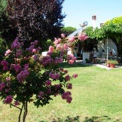 Отель Evangelia's Family House Греция, Ситония - отзывы, цены и фото номеров - забронировать отель Evangelia's Family House онлайн фото 18