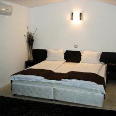 Hotel Melnik 3* Стандартный номер двуспальная кровать фото 2
