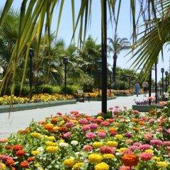 Отель Trendy Aspendos Beach - All Inclusive Сиде спортивное сооружение