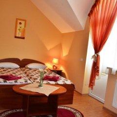 Гостиница Edelweis 2* Стандартный номер разные типы кроватей фото 3