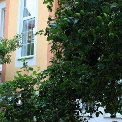 Гостевой Дом Альбертина вид на фасад фото 3