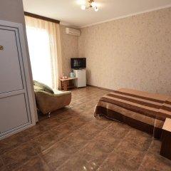Гостиница Селини Стандартный номер двуспальная кровать фото 12
