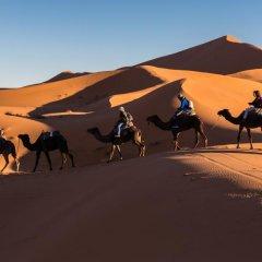Отель Merzouga Riad and Bivouac Excursion Марокко, Мерзуга - отзывы, цены и фото номеров - забронировать отель Merzouga Riad and Bivouac Excursion онлайн спортивное сооружение