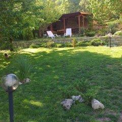Отель Villa Prolet с домашними животными