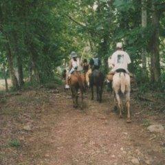 Отель La Casona encanto rural с домашними животными