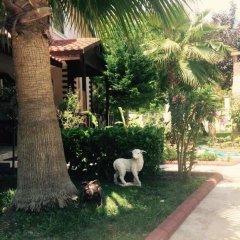 Отель Villa Var Village фото 11